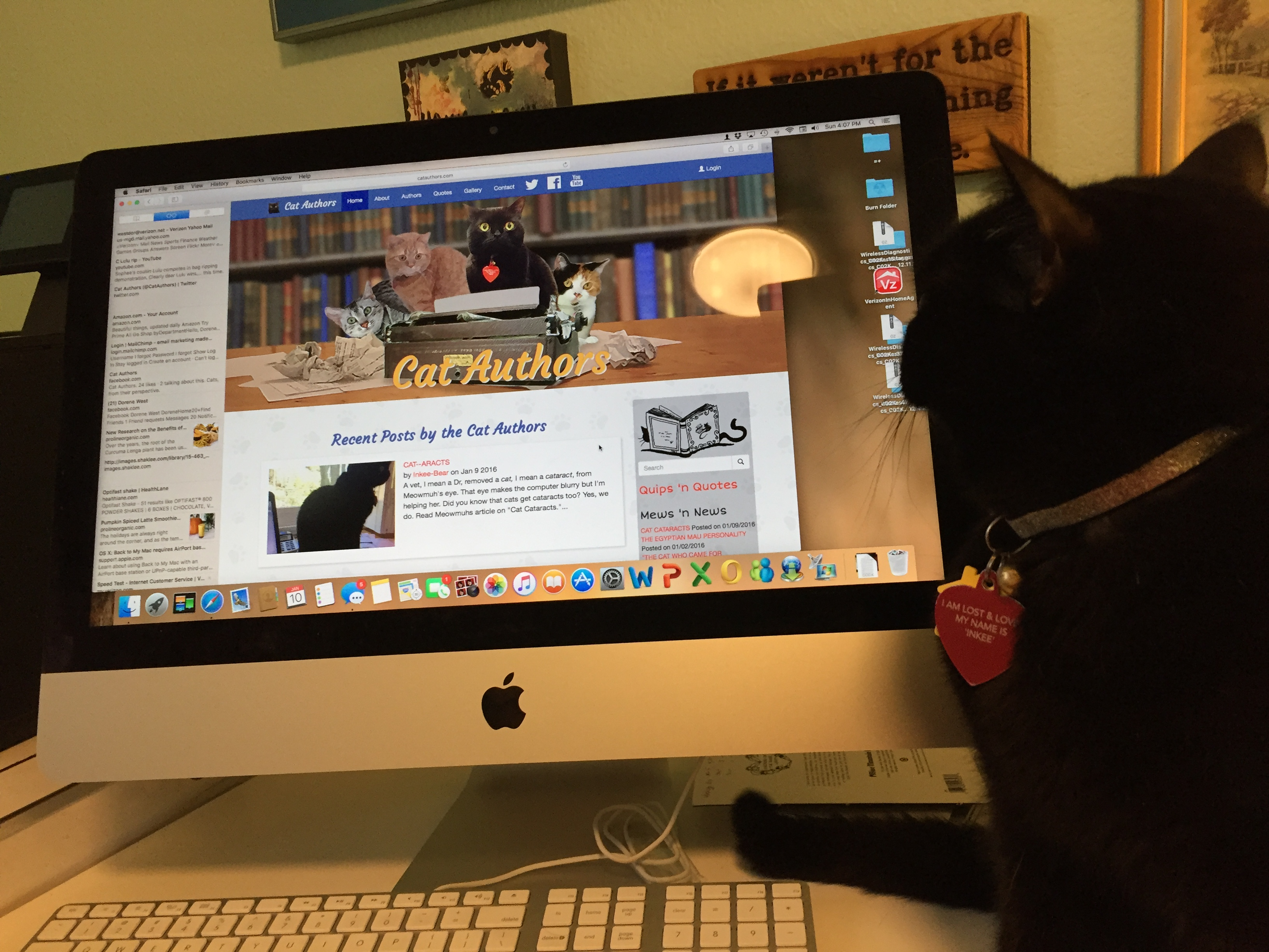 Quips N Quotes Cataracts  Cat Authors
