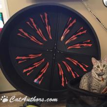 Gettin' ready to do my cardio on my exercise wheel.